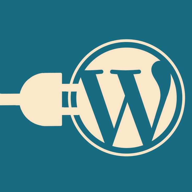 Problemas de velocidad en WordPress: ¿es tu hosting o el sitio web? 6